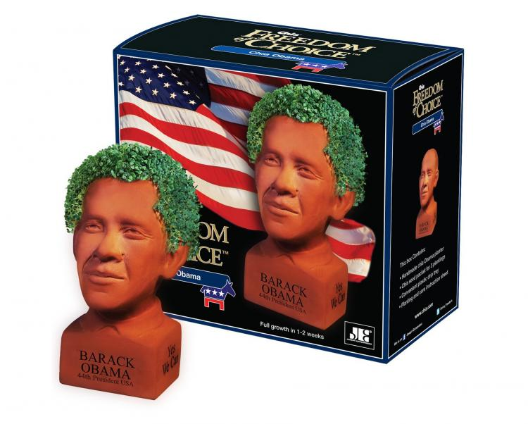 President Barack Obama Chia Pet