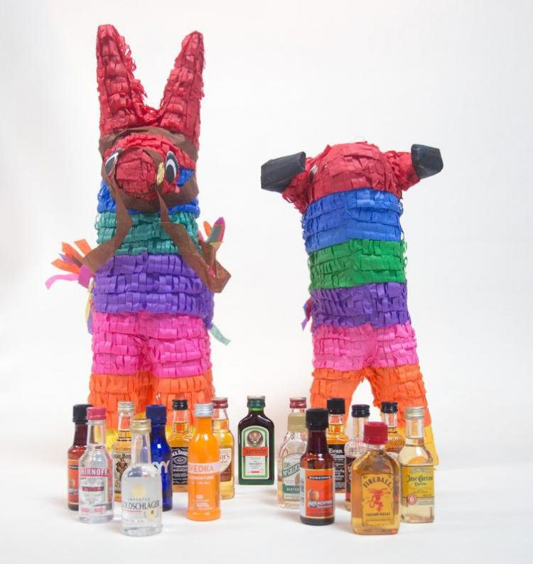 Booze Filled Pinata - Adult Pinata