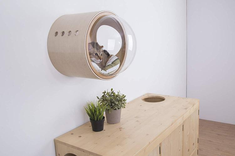 Bubble Window Wall-Mounted Cat Bed - Floating futuristic spaceship cat bed lounger - MYZOO Spaceship gamma