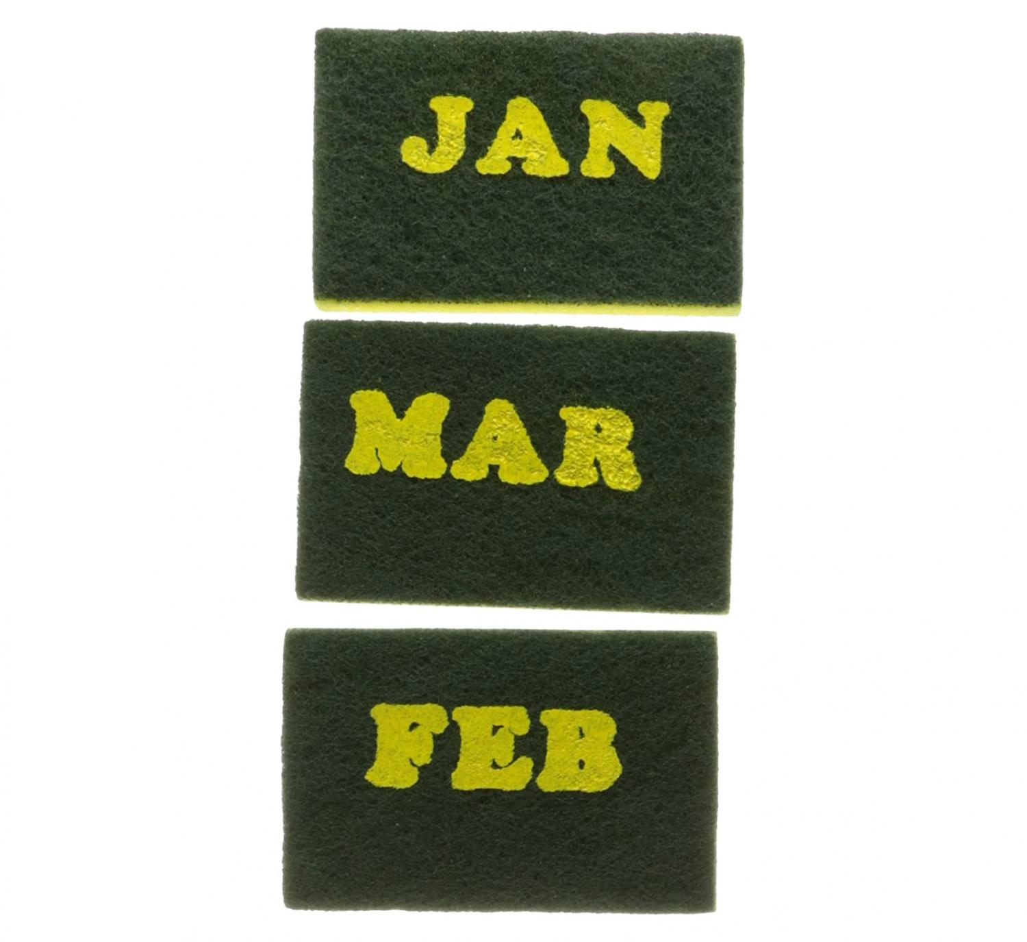 Calendar Sponges - Sponges With Months Written On Them
