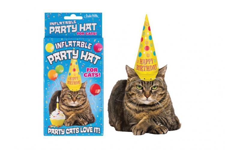 Cat Birthday Hat Cat Hat