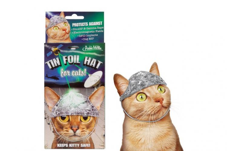 Cat tinfoil hat cat hat