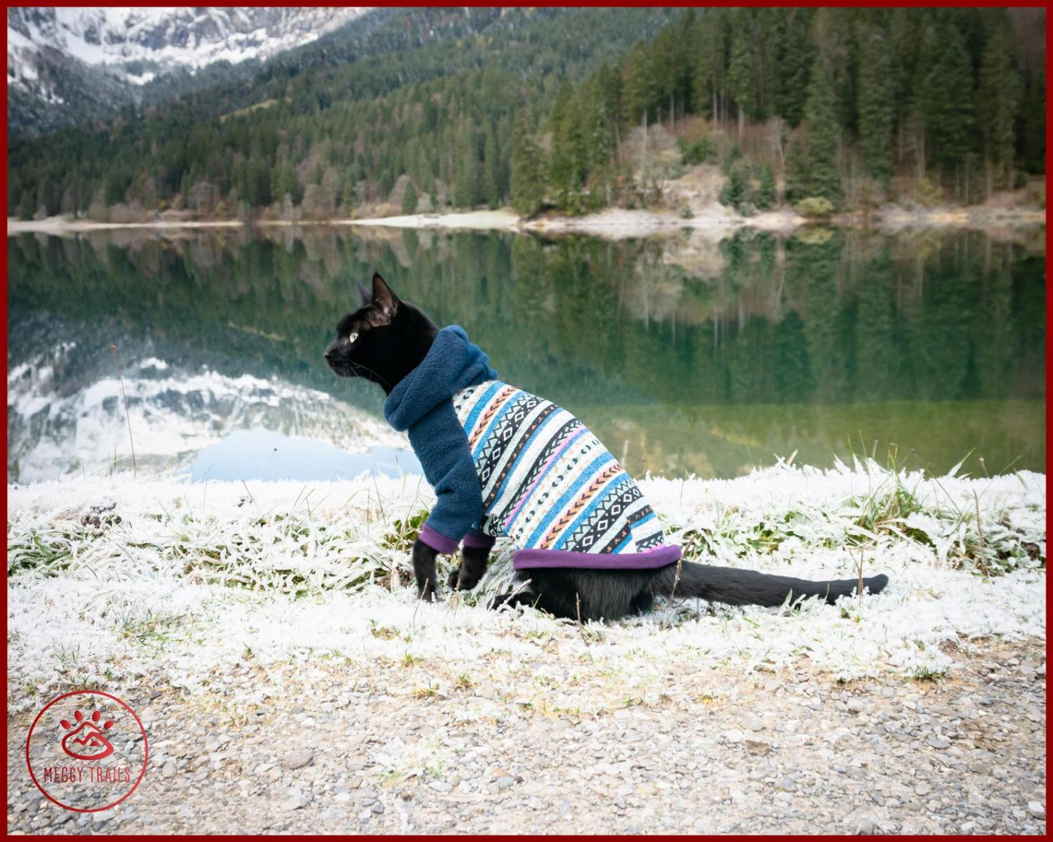 Cat Cardigan Sweater - Sweater for cats