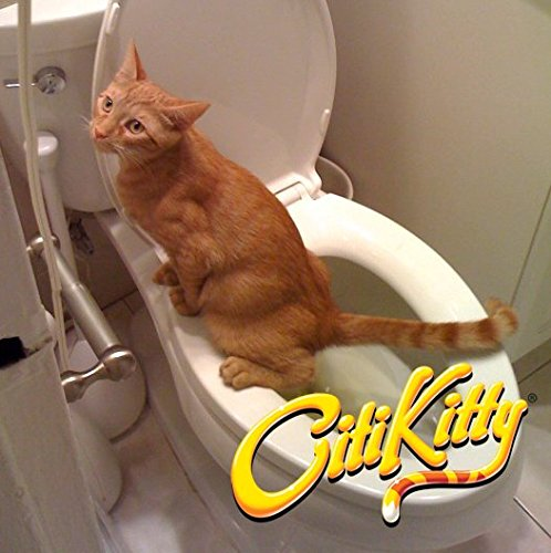 how to make your cat pee in toilet