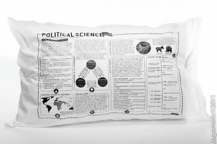 Study Guide Pillow Cases - Political Science
