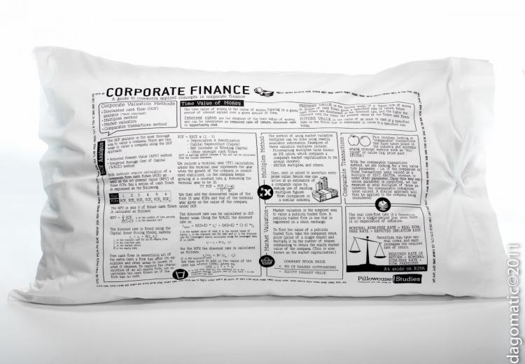 Study Guide Pillow Cases - Corporate Finance