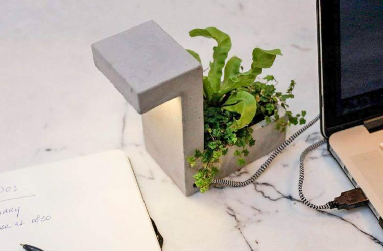 Concrete Desk Planter Doubles as a USB Lamp - Classy concrete desk lamp and plant holder