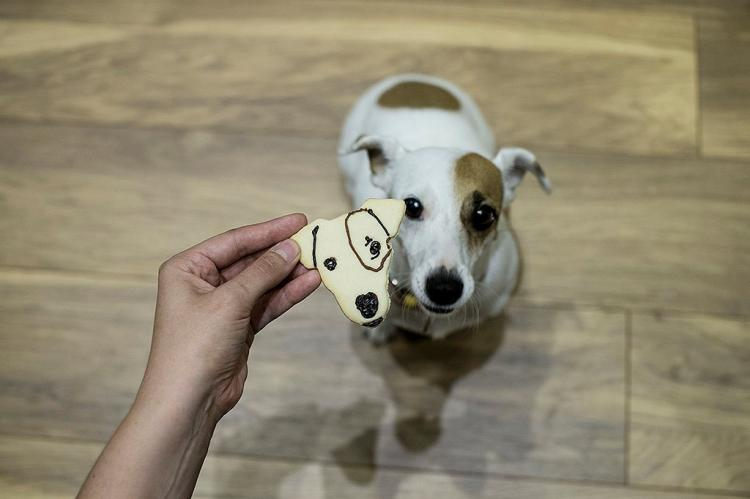 Cookie Cutter Shaped Like Your Face - Pets Face