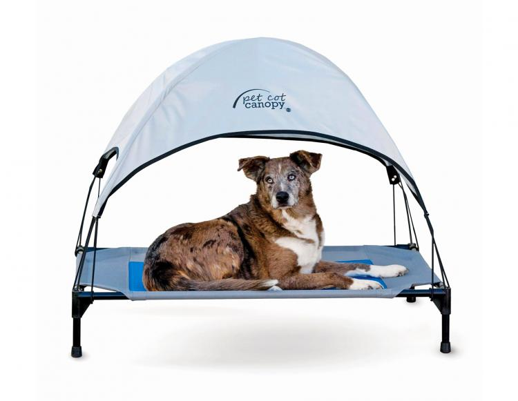 Cooling Outdoor Dog Lounger With Cold Water Bladder Keeps Pooch Cool In Hot Summer