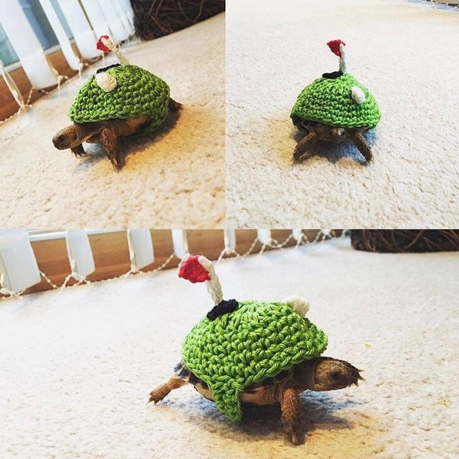 Crochet Turtle Sweater - Golf Course tortoise cozy