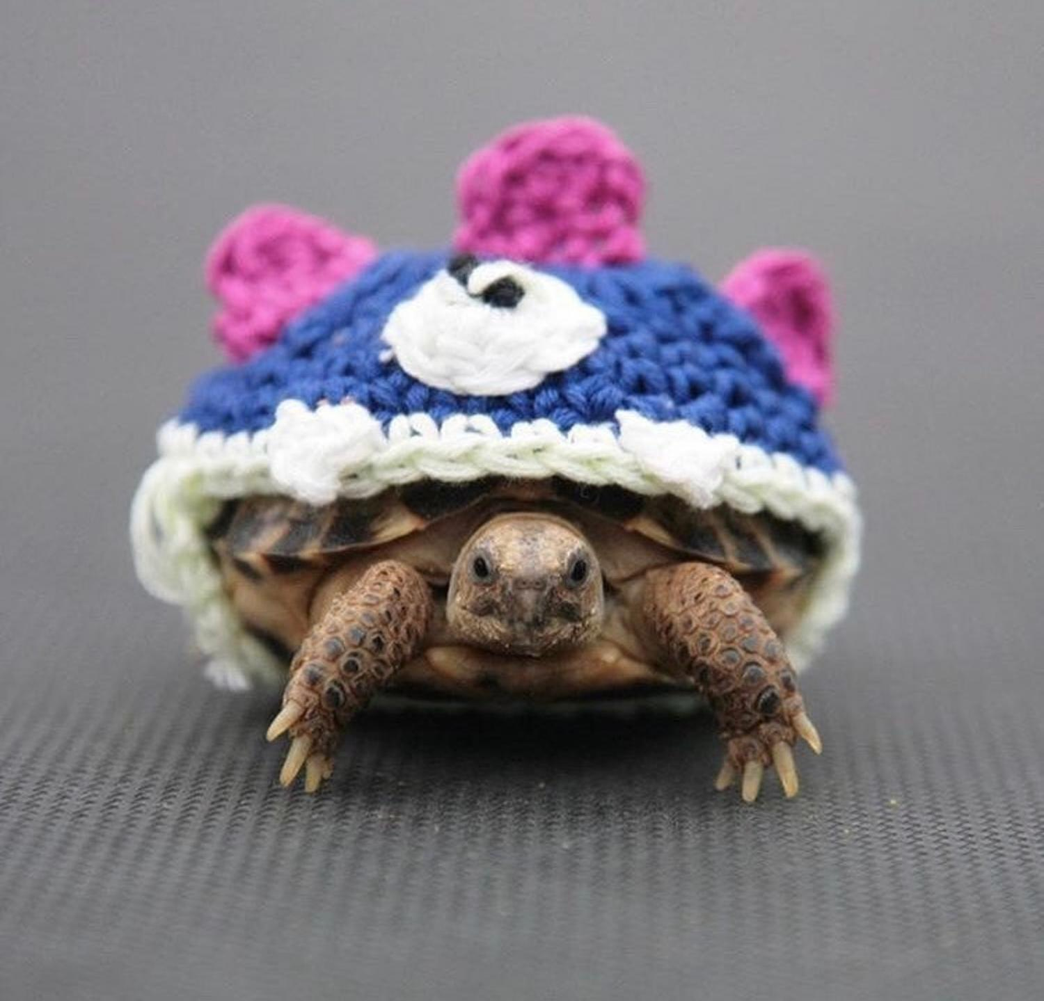 Crochet Turtle Sweater - Monster tortoise cozy