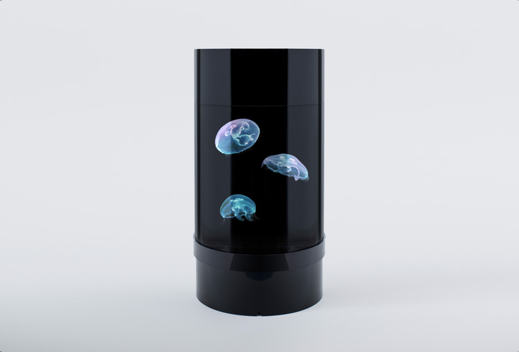 Cylinder Shaped Jellyfish Aquarium