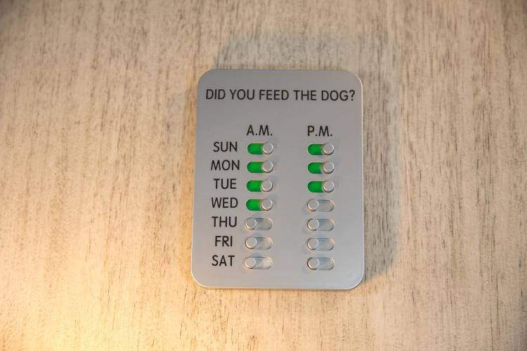 Did You Feed The Dog Reminder Tablet - Feed the dog reminding sliders