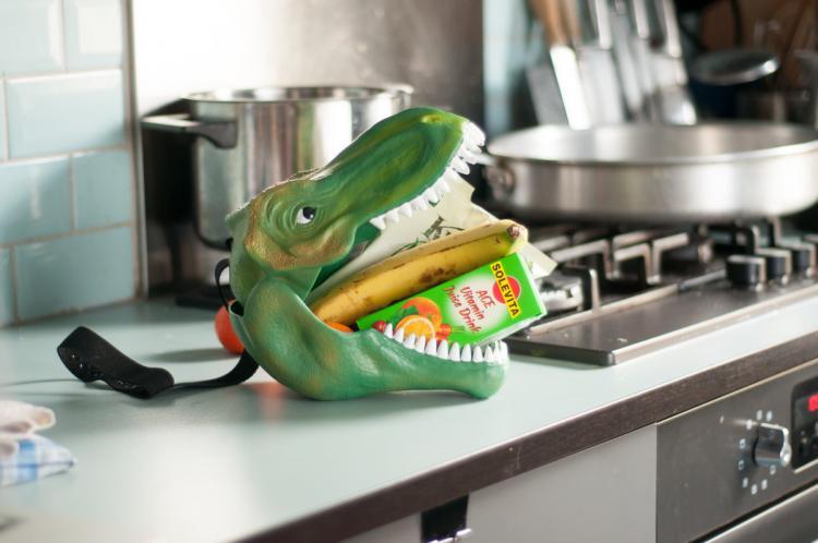 Toys For Geeks : Dinosaur head lunch box