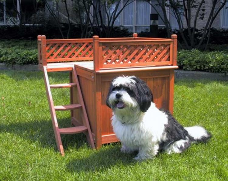 Dog Bed Bunk Bed - Wooden Room With a View Pet House