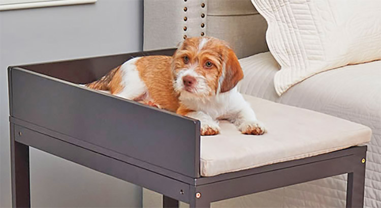 Dog Bedside Bunk- Elevated dog bed with stairs - Dog bunk beds