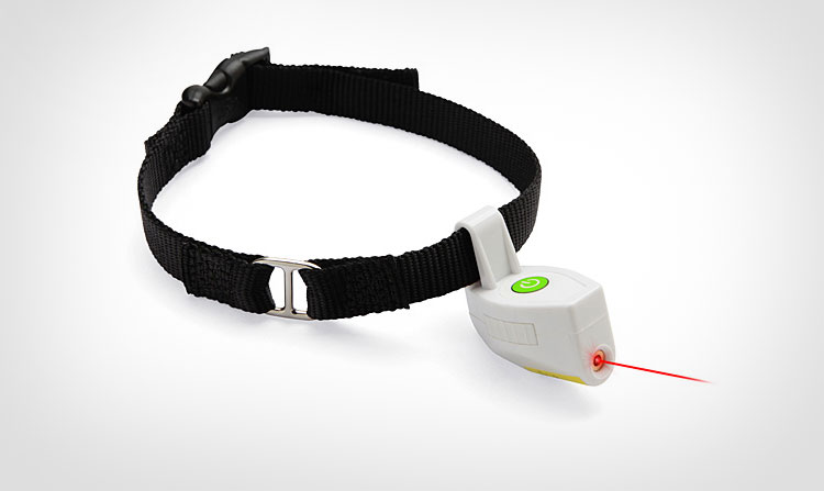 Dog Collar With Laser Pointer