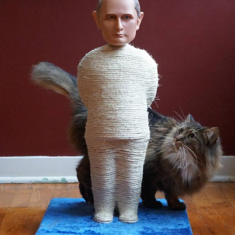 Vladmir Putin Cat Scratcher Post