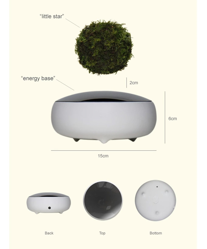 Air Bonsai - Magnetic Floating Bonsai Tree