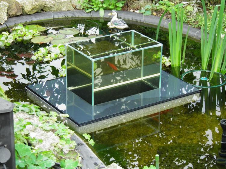Floating Fish Koi Pond Observatory Lets You View Your