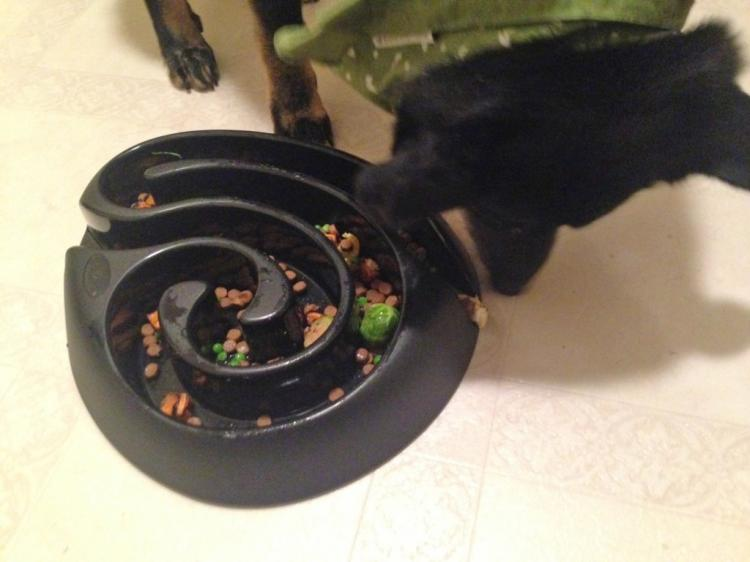 Buster Maze Shaped Dog Food Bowl Puzzle
