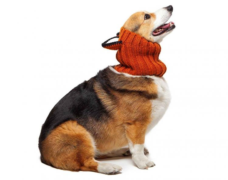 Zoo Snoods - Fox Shaped Dog Hood - Knit dog hood turns your dog into a fox