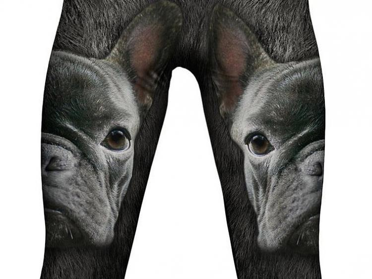 French Bulldog Leggings / Yoga Pants
