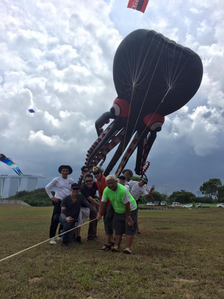巨型章鱼风筝