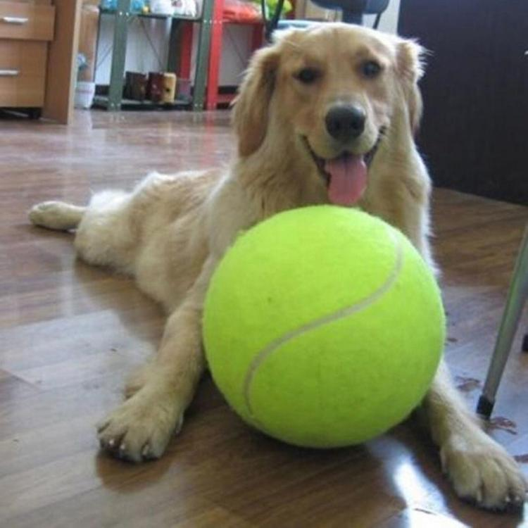 Giant Tennis Ball For Your Dog