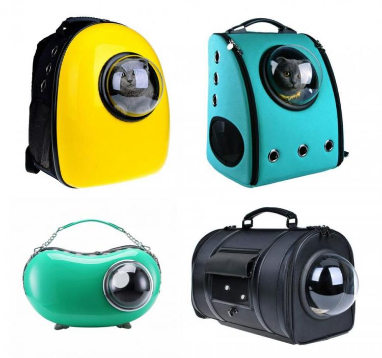 Bubble Window Pet Bags Give Your Pet a View While You Travel