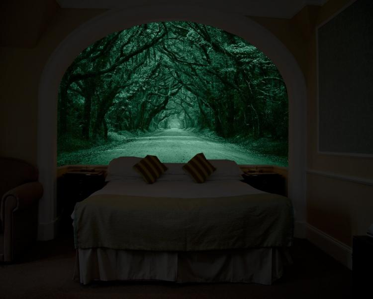 glow in the dark wall mural that makes it look like you. Black Bedroom Furniture Sets. Home Design Ideas