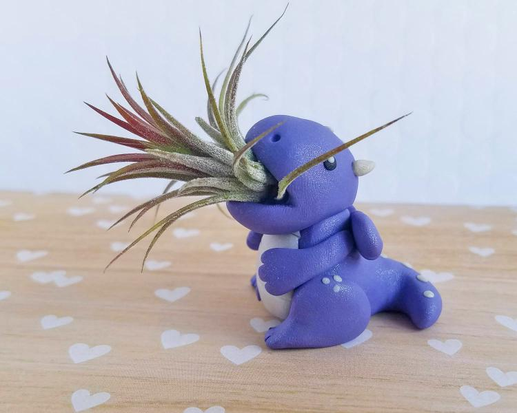 Dragon Air Planter - Cute dragon air plant holder