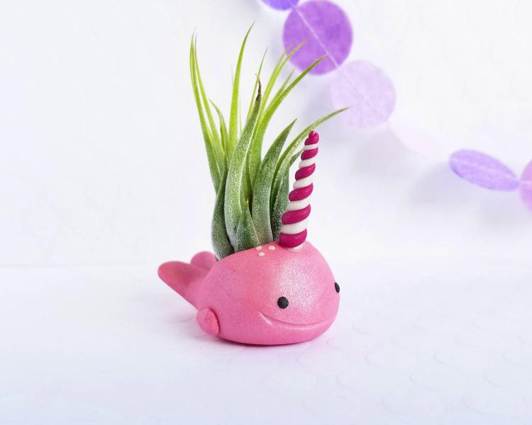 Narwhal Air Planter - Cute narwhal air plant holder