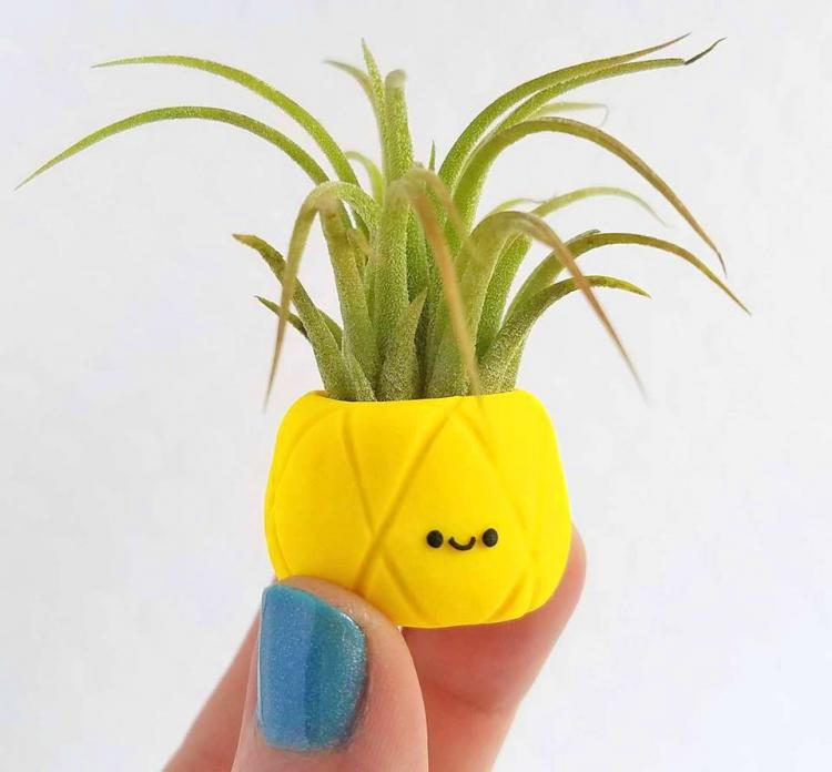 Pineapple Air Planter - Cute pineapple air plant holder