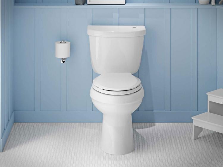 Kohler Touchless Toilet Flusher