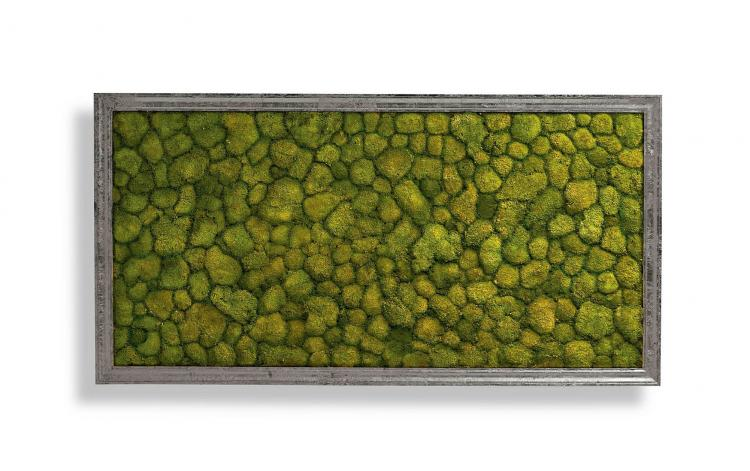 Living Moss Wall Art