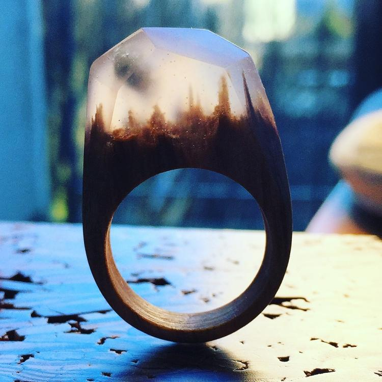 Beautiful Rings With Mini Landscapes Encapsulated In Resin
