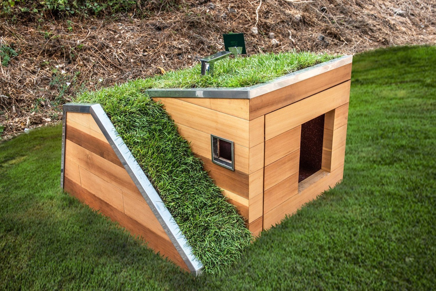 Studio Schicketanz Modern Dog House Is Made With Grass Ramp, and An Automatic Water Faucet On Top