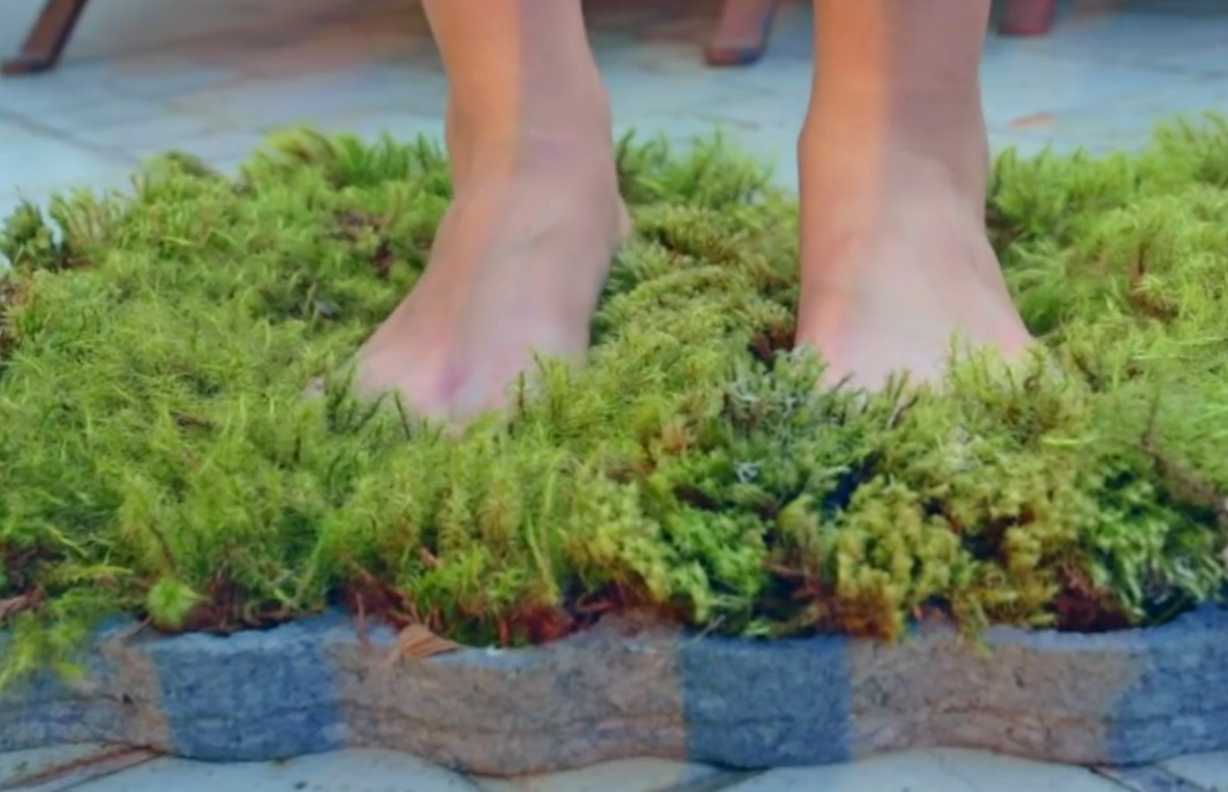 Moss Bathroom Mat - Real moss shower mat