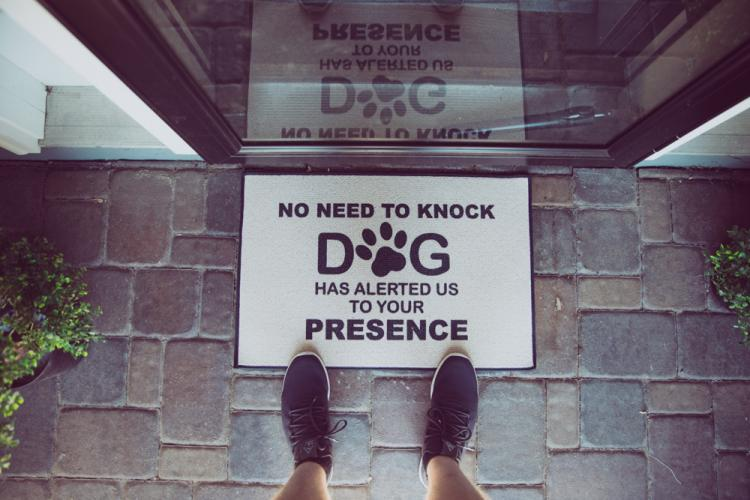 No Need To Knock, The Dogs Have Alerted Us To Your Presence Doormat - Funny Dog Owner Doormat
