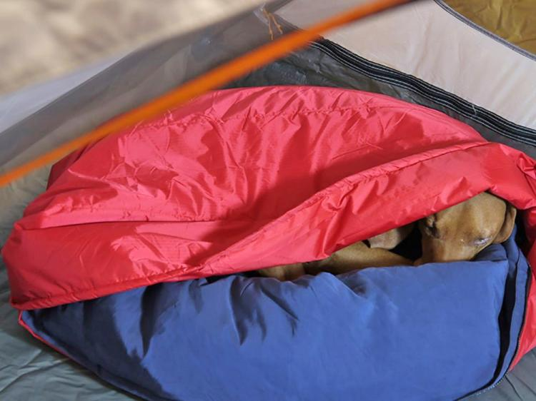 Noblecamper Dog Sleeping Bag and Bed