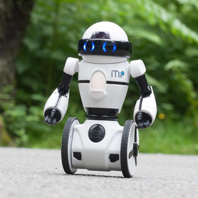 Omnibot Hello Is A Self Balancing Mini Robot You Can