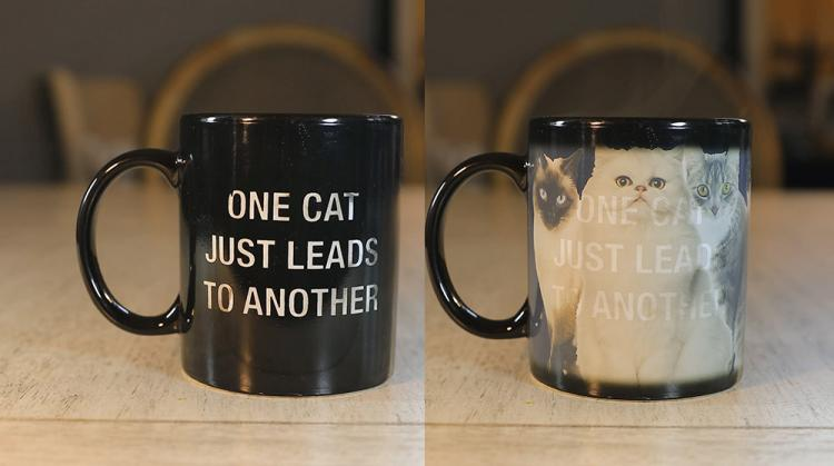 One Cat Leads To Another Heat Changing Mug - Cat Lady Mug - Funny Cat Owner Coffee Mug