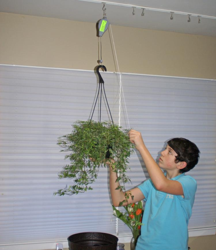 Plant Caddie - Plant Pulley System