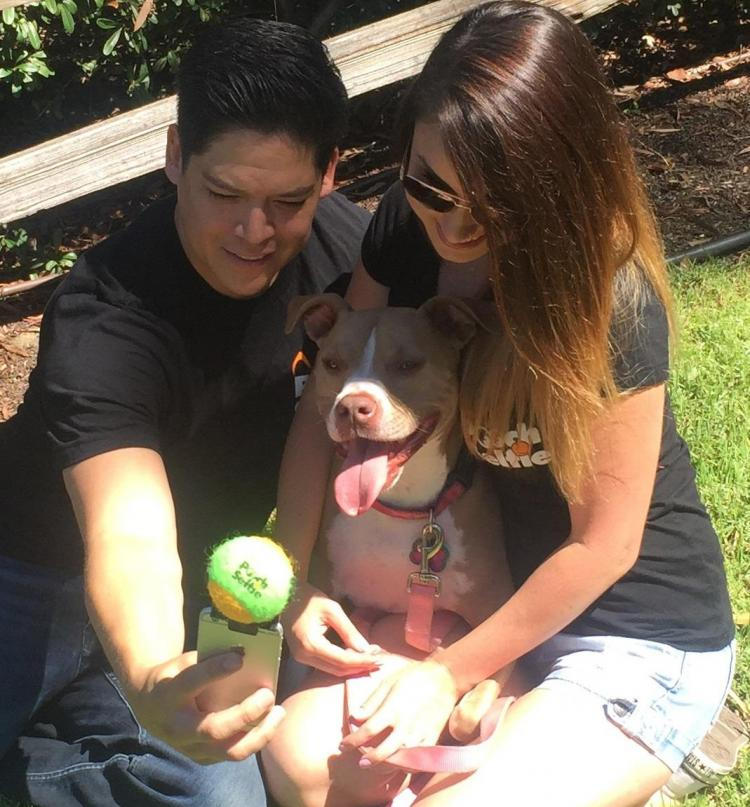 Pooch Selfie - Smart Phone Ball Holder For Dog Selfies
