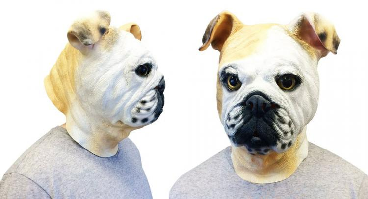 English Bulldog Dog Mask