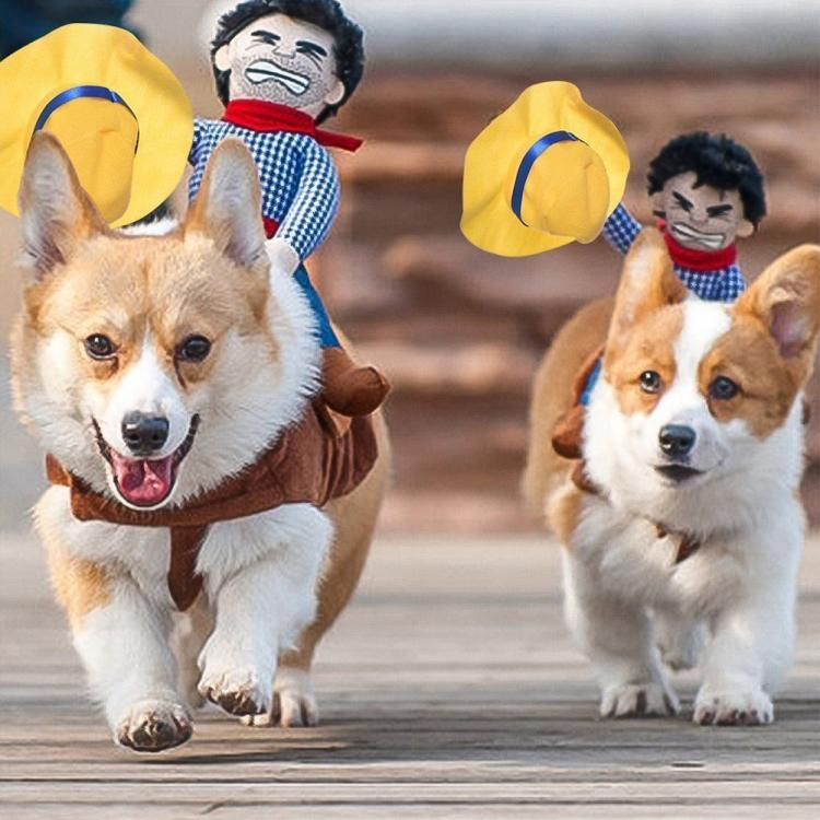 rodeo cowboy dog costume ride em cowboy halloween dog costume