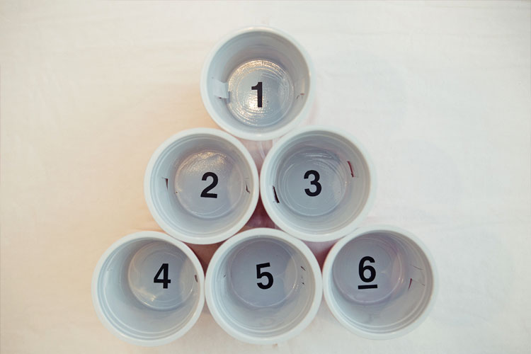 Slip Cups - Beer Pong Cup Inserts