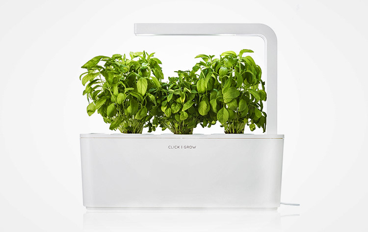 Smart Herb Home Garden Starter Kit - NASA Plant Technology