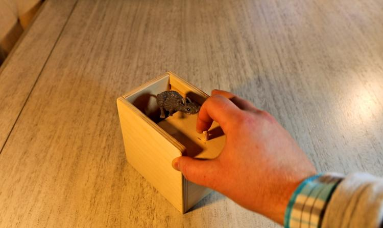 Mouse Scare Box - Jumping Rat Prank Wooden Box